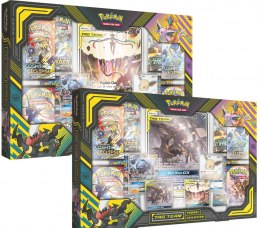 Pokemon TCG: TAG TEAM Powers Collection (Display 2 szt.)