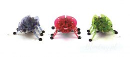 Hexbug Żuczek nano robot Innovation First